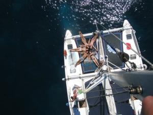 Sailing week Greece Salento Albania