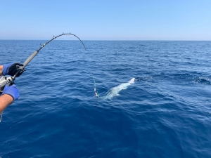deep-sea fishing trips in Salento