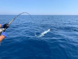 Péche de fond en haute mer Salento