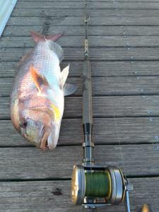 pêche traîne fond salento