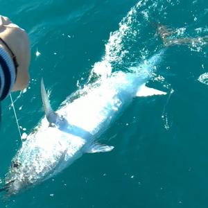 fishing drifting in salento www.quarantesimoparallelo.it